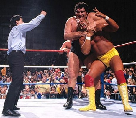 Hulk Hogan Andre The Giant Friends