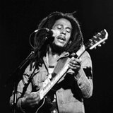 news-entertainment-20111202-US.Bob.Marley.Family.Feud