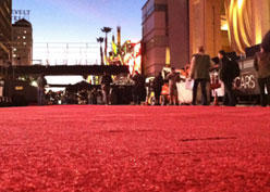 Red Carpet Roll-Out