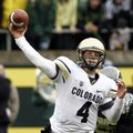 Colorado quarterback Jordan Webb throws during the first half of their NCAA college football game against Oregon in Eugene, Ore., Saturday, Oct. 27, 2012.(AP Photo/Don Ryan)