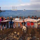 news-national-20131029-US--Giant.Fish