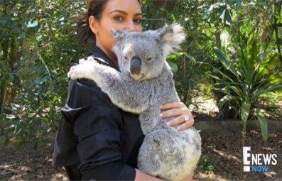 Play Kim Cuddles with a Koala Free Online