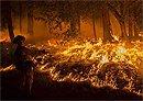 Western Fires