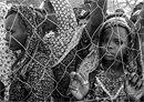 Nigeria Refugees