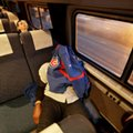 Chicago Cubs fan Marvin Thomas sleeps Thursday, Oct. 27, 2016, during the train ride from Cleveland to Chicago's Union Station after attending Game 2 of baseball's World Series in Cleveland Wednesday night. (AP Photo/Chris Carlson)