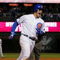 Chicago Cubs first baseman Anthony Rizzo (44) celebrates as he runs bases after hitting a home run during the fifth inning of Game 6 of the National League baseball championship series against the Los Angeles Dodgers, Saturday, Oct. 22, 2016, in Chicago. (AP Photo/Nam Y. Huh)