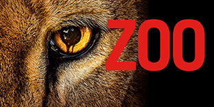'Zoo'