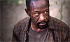 "Catch Up on ""The Walking Dead"""